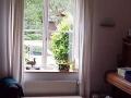 Fenster3schi.jpg