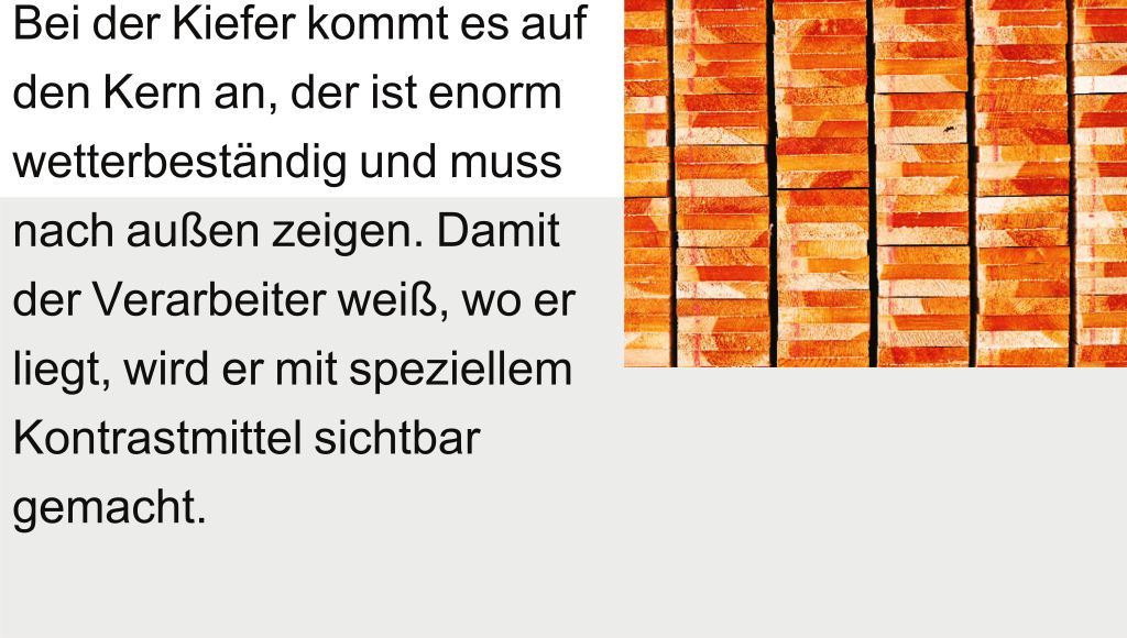 Info Holz